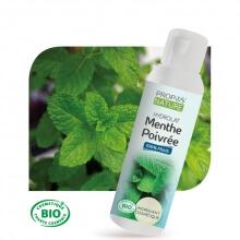 Menthe poivrée BIO - Hydrolat 100 ml