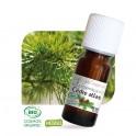 huile essentielle cedre atlas bio