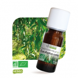 Eucalyptus radié BIO (AB) - Huile essentielle 10 ml