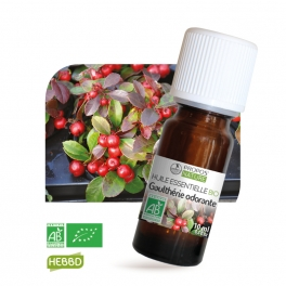 Gaulthérie BIO (AB) - Huile essentielle 10 ml