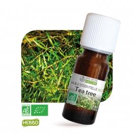 Tea tree BIO (Arbre à thé) (AB) - Huile essentielle 10 ml