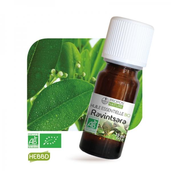 huile essentielle ravintsara bio