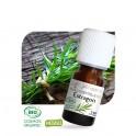Estragon BIO - Huile essentielle 5 ml