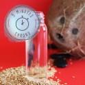 Elixir capillaire Protection et Réparation - Ma petite trousse d'été