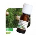 huile essentielle cypres bio
