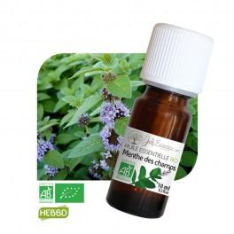 huile essentielle menthe bio