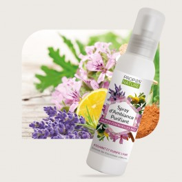 Spray d'Ambiance purifiant - 100 ml