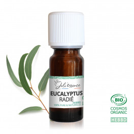 Eucalyptus radié BIO - Huile essentielle
