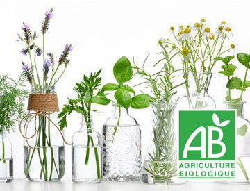 eau florale bio