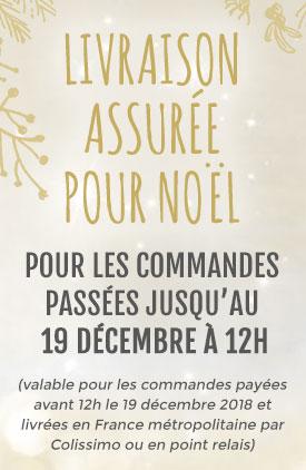 Livraison assurée pour Noël pour les commandes passées avant le 19 décembre à 12h