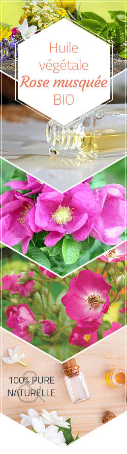 huile végétale de rose musquée avis
